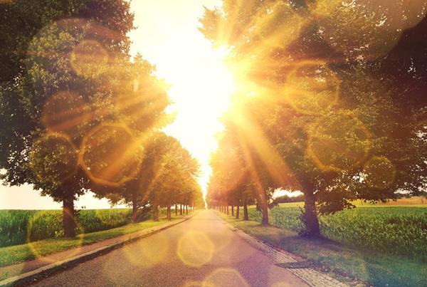 Lebensführung in der ayurvedischen Lehre